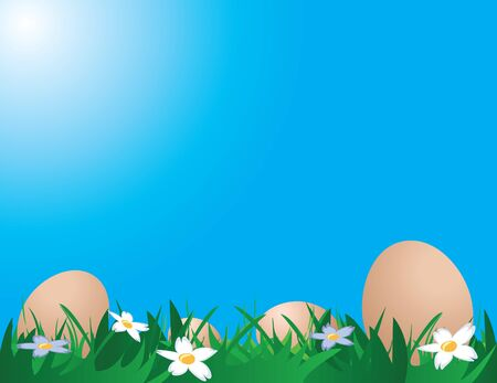 chicken and egg: Illustration of chicken eggs on the grass against blue sky