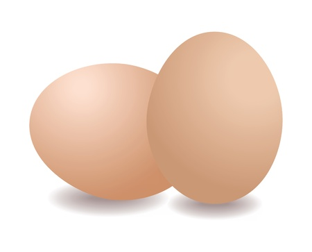 boiled: Illustration of two eggs isolated on white background Illustration