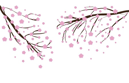 peach tree: Illustration of a Cherry blossom in spring time