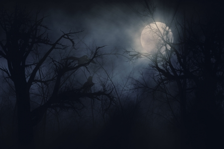 Illustration of night ravens on a trees background