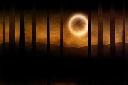 forest fire: Ilustraci�n del bosque oscuro en color naranja niebla y luna llena