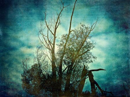 Abstract grunge textured vintage background with tree.