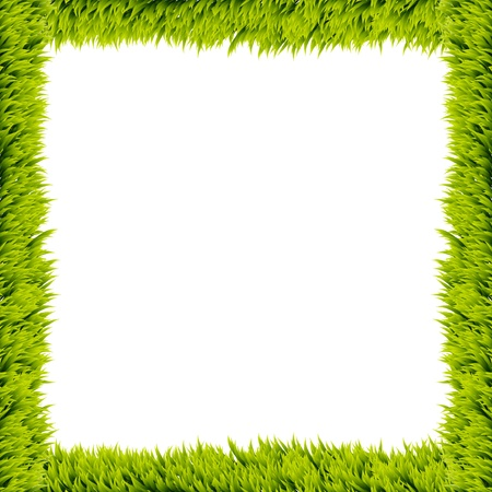 Fresh green grass frame on white background  photo