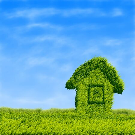 Grass house on a grass field background  Stock Photo - 15281919