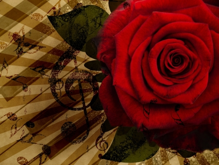 Abstract grunge rose and notes, vintage music background photo