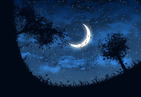 Illustration of sky at night with stars and crescent moon  illustration