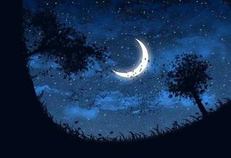 noche y luna: Ilustraci�n del cielo en la noche con estrellas y luna creciente Foto de archivo