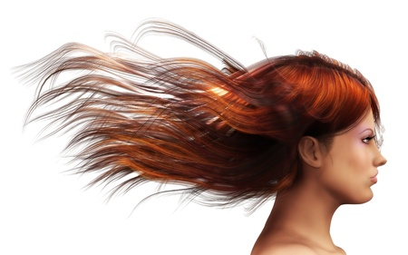 blowing of the wind: 3d girl with brown  hair blowing in the wind. Stock Photo
