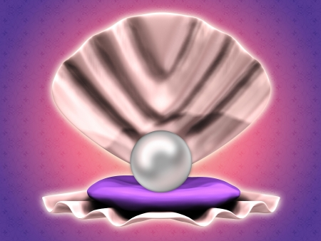 oyster shell: Illustration of white pearl in big open shell background.