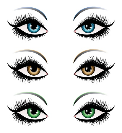 green eyes: Illustration of woman eyes in different color with long eyelashes.