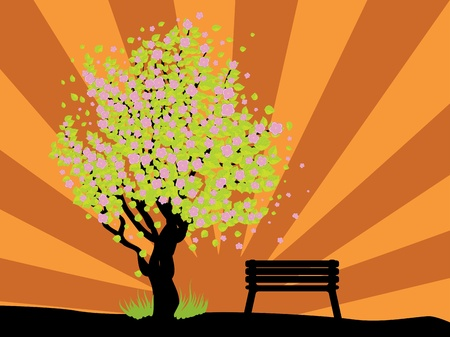 Illustration of cherry with pink blossom, sakura tree and bench. Stock Vector - 17386821