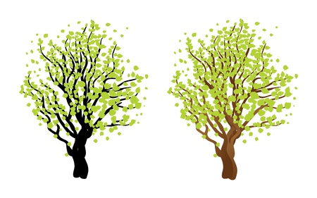 Illustration of abstract tree with fresh green leaves. Stock Vector - 17386818