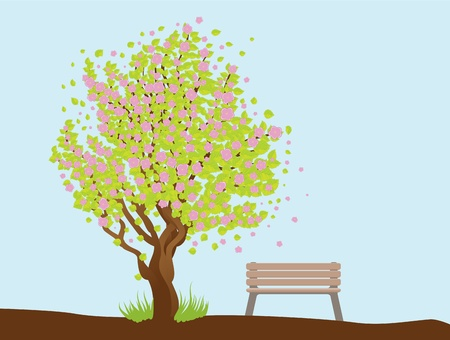 Illustration of cherry with pink blossom, sakura tree and bench. Stock Vector - 17539822