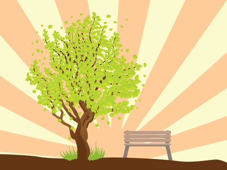 Illustration of summer tree with green leaves and bench on background with rays. Stock Vector - 17539820