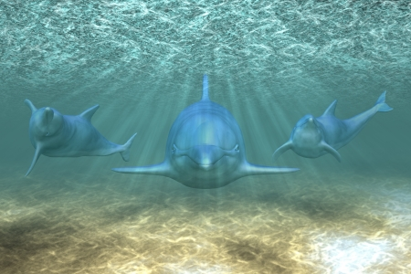 Illustration of a dolphins playing in sunrays underwater.