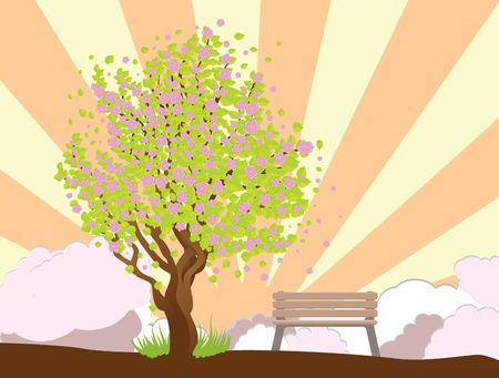 Illustration of cherry with pink blossom, sakura tree and bench. Stock Vector - 17784903