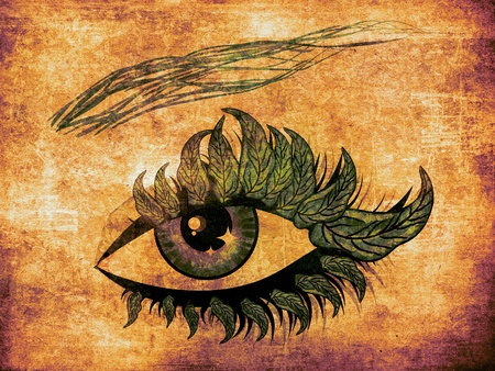 Female eye with green leaves lashes on grunge background. photo