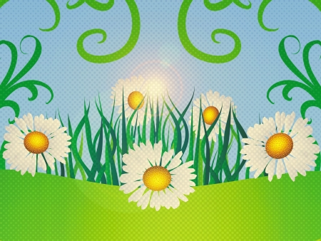 Summer floral card with daisies on blue background. Stock Photo - 18460145
