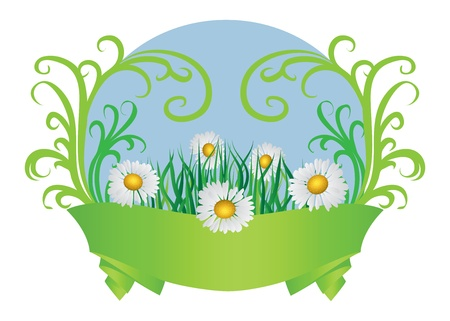 Summer floral card with daisies and green ribbon. Stock Vector - 18495659