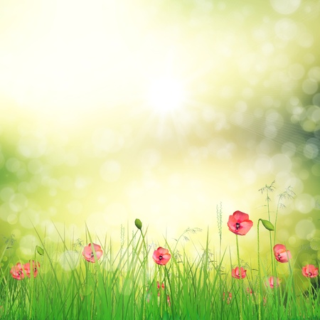 Spring background with 3d fresh green grass and poppy flowers over bokeh background.