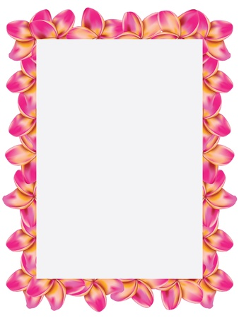 Floral frame made from plumeria, frangipani flowers. photo