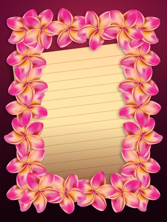 Pink plumeria, frangipani flowers frame with yellow sheet of paper background. photo