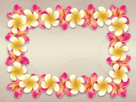 Plumeria, frangipani flowers frame on abstract background.