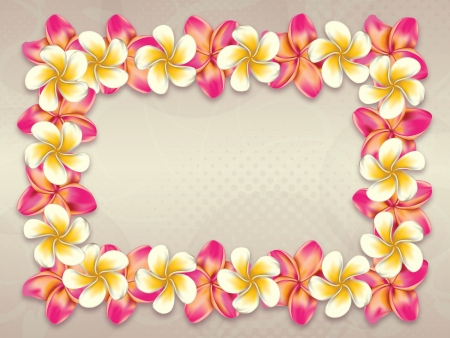 Plumeria, frangipani flowers frame on abstract background.