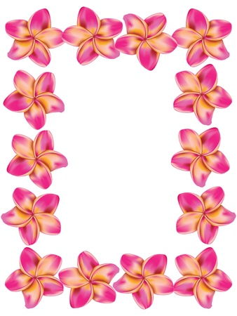 Floral frame made from plumeria, frangipani flowers. Vector