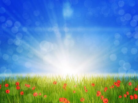 Poppies on grass field in sun rays, spring background. Stock Photo - 18959939