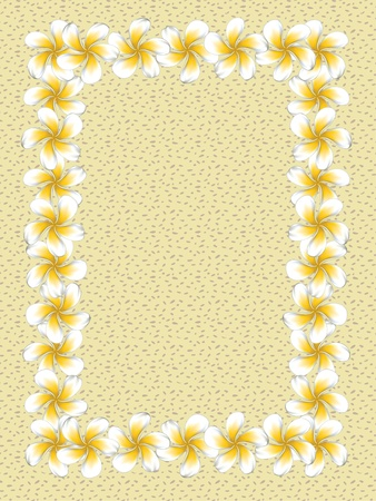 Floral frame made from white plumeria, frangipani flowers on sand background. Vector