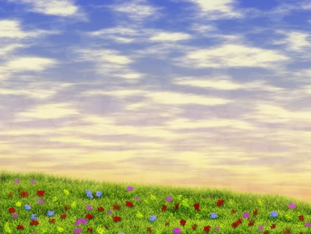 Summer field with flowers over sunrise sky background. Stock Photo - 19059736
