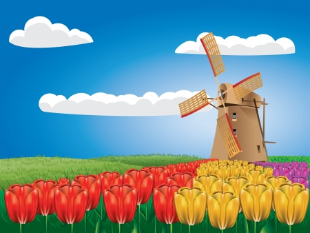 holland windmill: Cartoon landscape with a traditional windmill and tulip flowers. Illustration