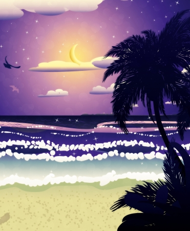 Tropical beach at night and crescent moon in the sky. Imagens