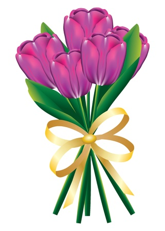 Beautiful bouquet of tulip flowers with bow on white background. Vector