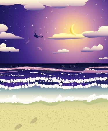 seacoast: Tropical beach at night and crescent moon in the sky