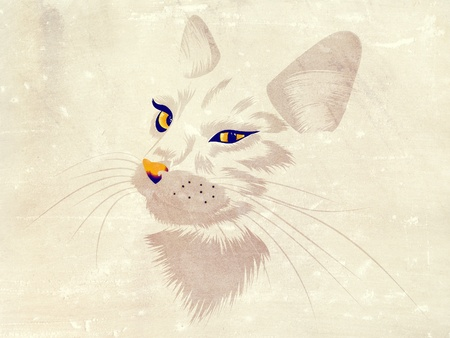 Illustration of a cat with yellow eyes on white background.