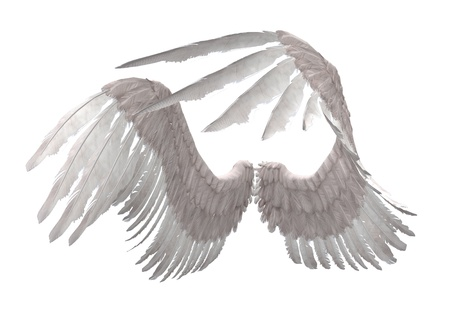 Digitally rendered image of white feathered angel wings.