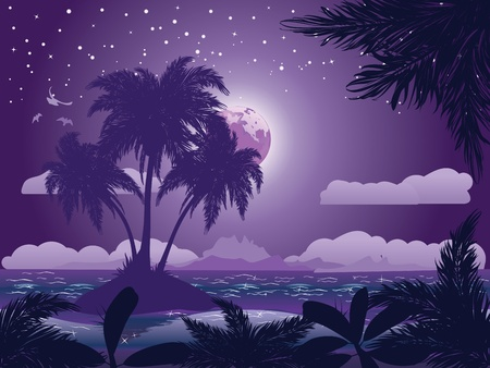 polynesia: A tropical island at night under starry sky background.