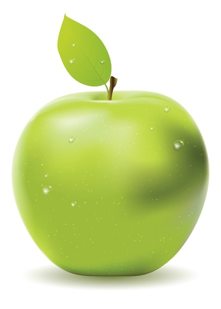 Green apple with leaf and water drops on white background. Vector