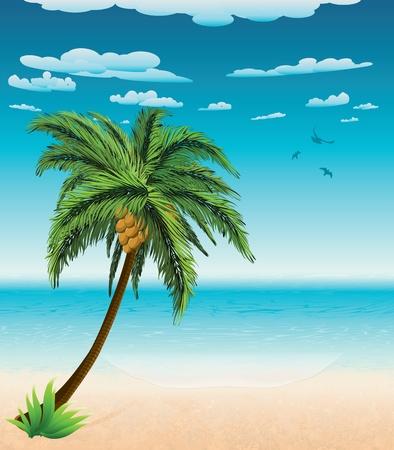 Big palm tree on summer beach background.