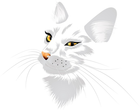Illustration of a cat with yellow eyes on white background. Vector
