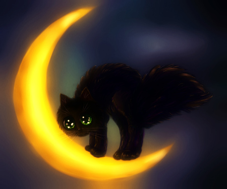 lonesome: Cute black cat on crescent moon over night sky.