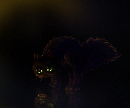 Cartoon black kitten on a rainy night illustration. illustration