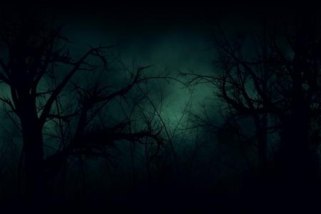 Dark Halloween forest with green fog illustration.