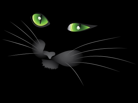 unkind: Cartoon face of Halloween cat on black . Illustration