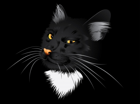 glowing skin: Cartoon cat with yellow eyes on black background.