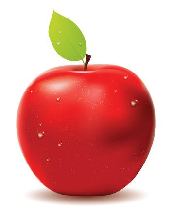 pomme rouge: Pomme rouge avec des feuilles et gouttes d'eau sur blanc.