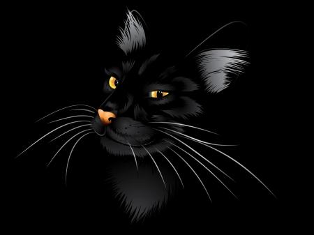 Cartoon kat met gele ogen op zwarte achtergrond.