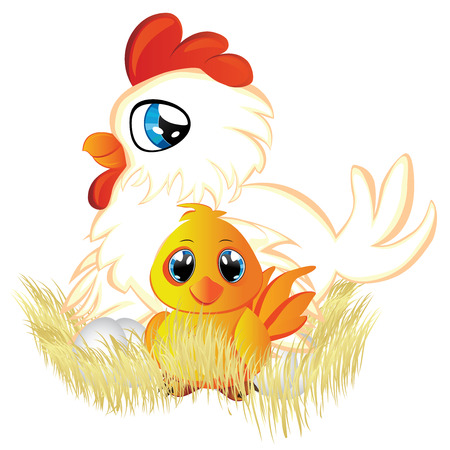 baby chicken: Cute cartoon white hen with eggs and yellow chicken in her nest. Illustration